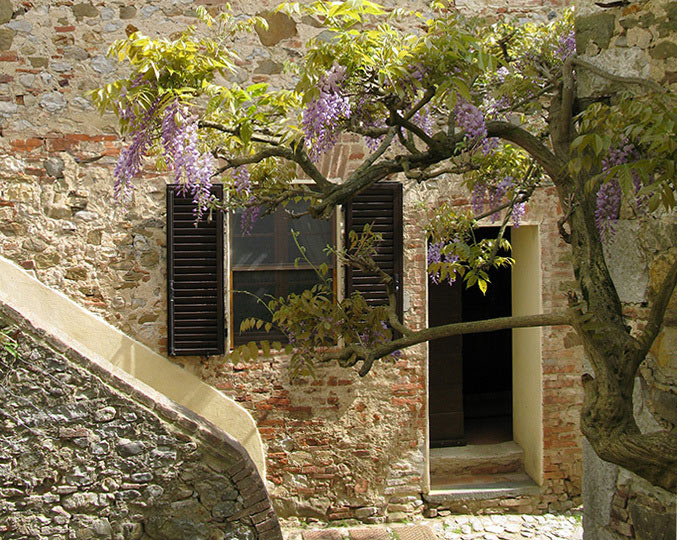 San Giovanni East : villa rental tuscany with pool
